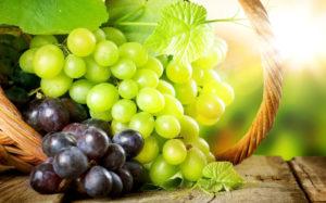 alimentos antioxidantes para el deporte vita nutricion